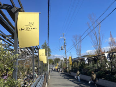 植物のお店。the Farm universal(ザファームユニバーサル)へお買い物。子供も楽しいレストランも!