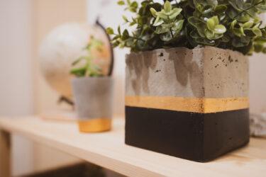 【セメントポットDIY】植物用コンクリート調の鉢を自作する方法。グリーン用オリジナル鉢作り(百均DIY)