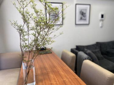 【緑のある暮らし】フラワーショップでツツジの枝物を購入。季節を感じるリビングの作り方。イケアの花瓶に飾って